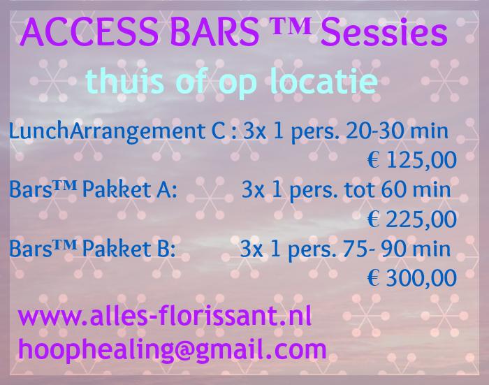 prijslijst bars sessie-Pakket website